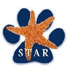 STAR Logo