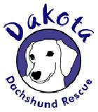 DDR Logo
