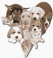 WC SPCA Logo