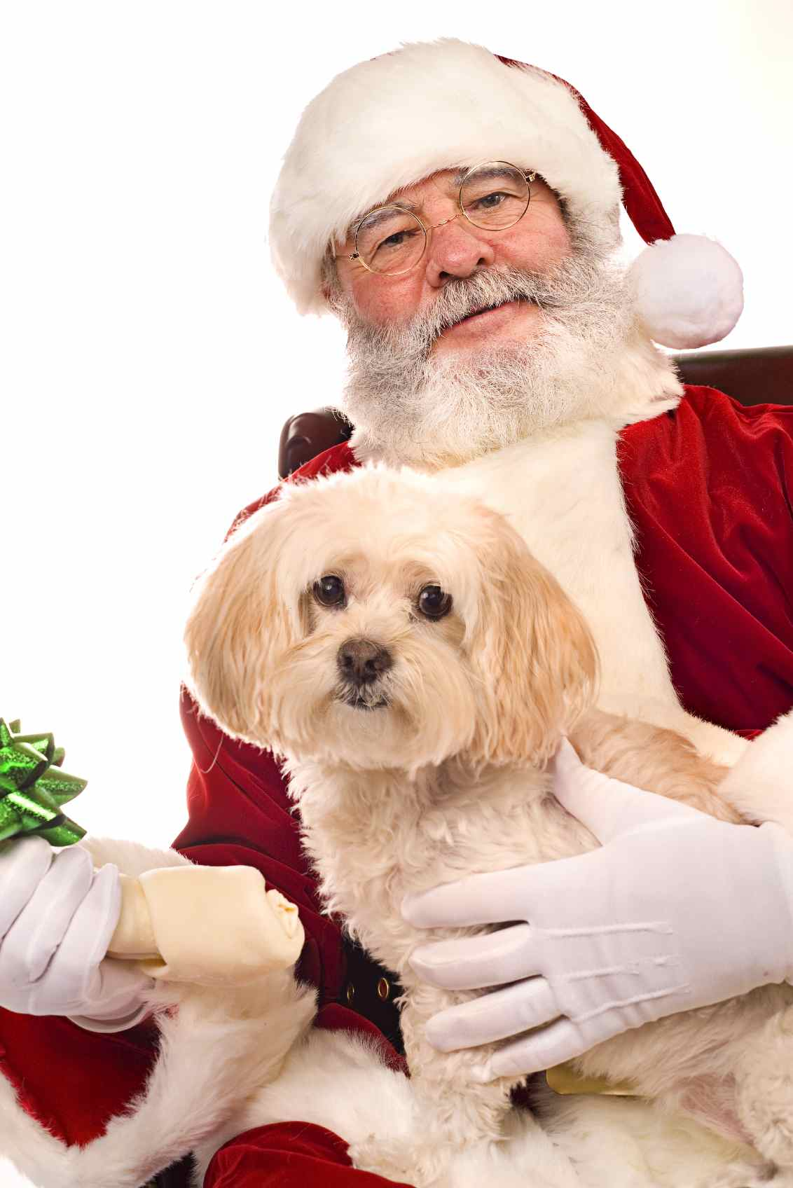 Santa and Dog low res