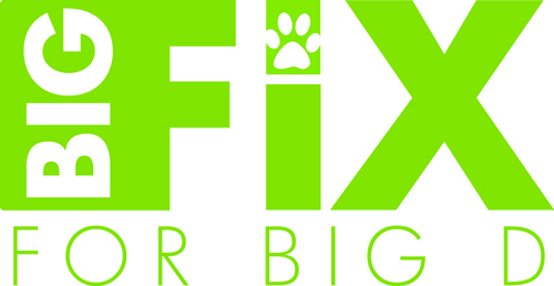 Big Fix Logo