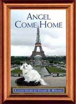 Angel Come Home