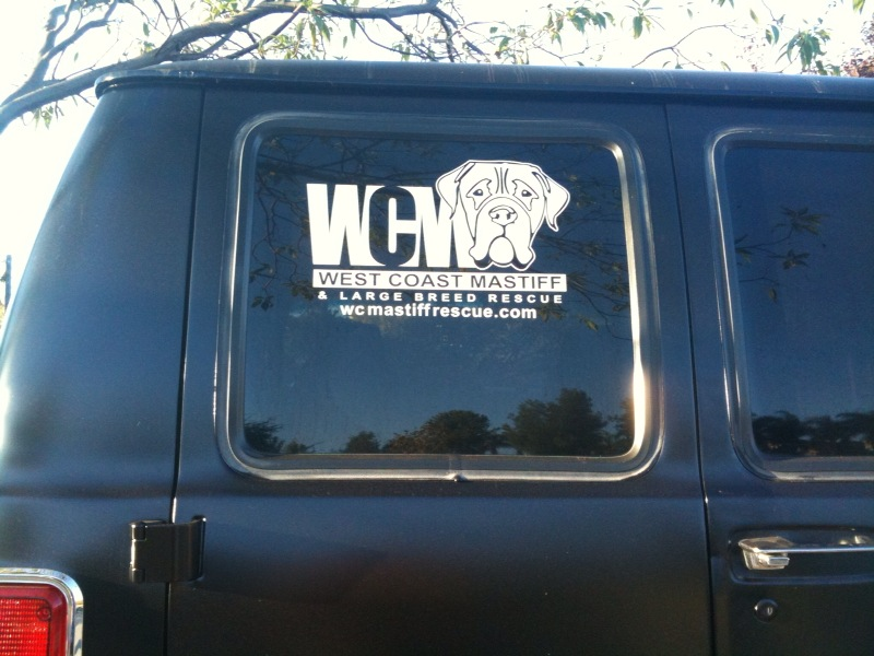 WCM Window Sticker