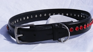 bigdog collar red buckle