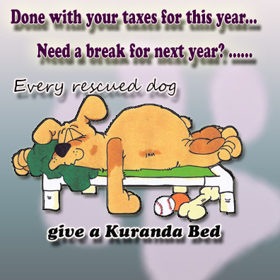 Kuranda Bed Donate Labs and Freinds tax