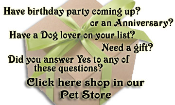 Lab and Friends Pet Store Shopping is here