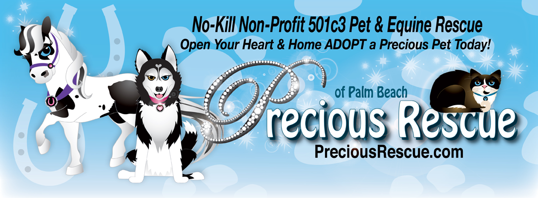 Precious Rescue of Palm Beach