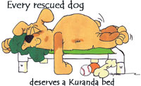 kuranda cartoon