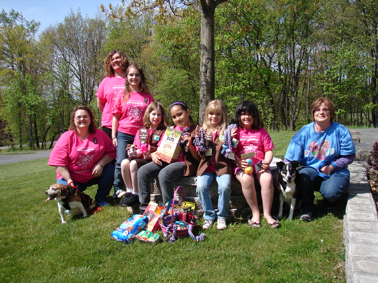 Milton Brownie Troop