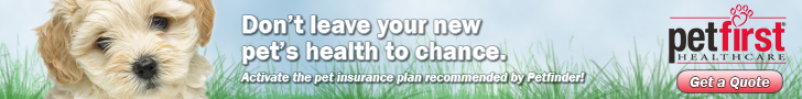 PetFirst Insurance