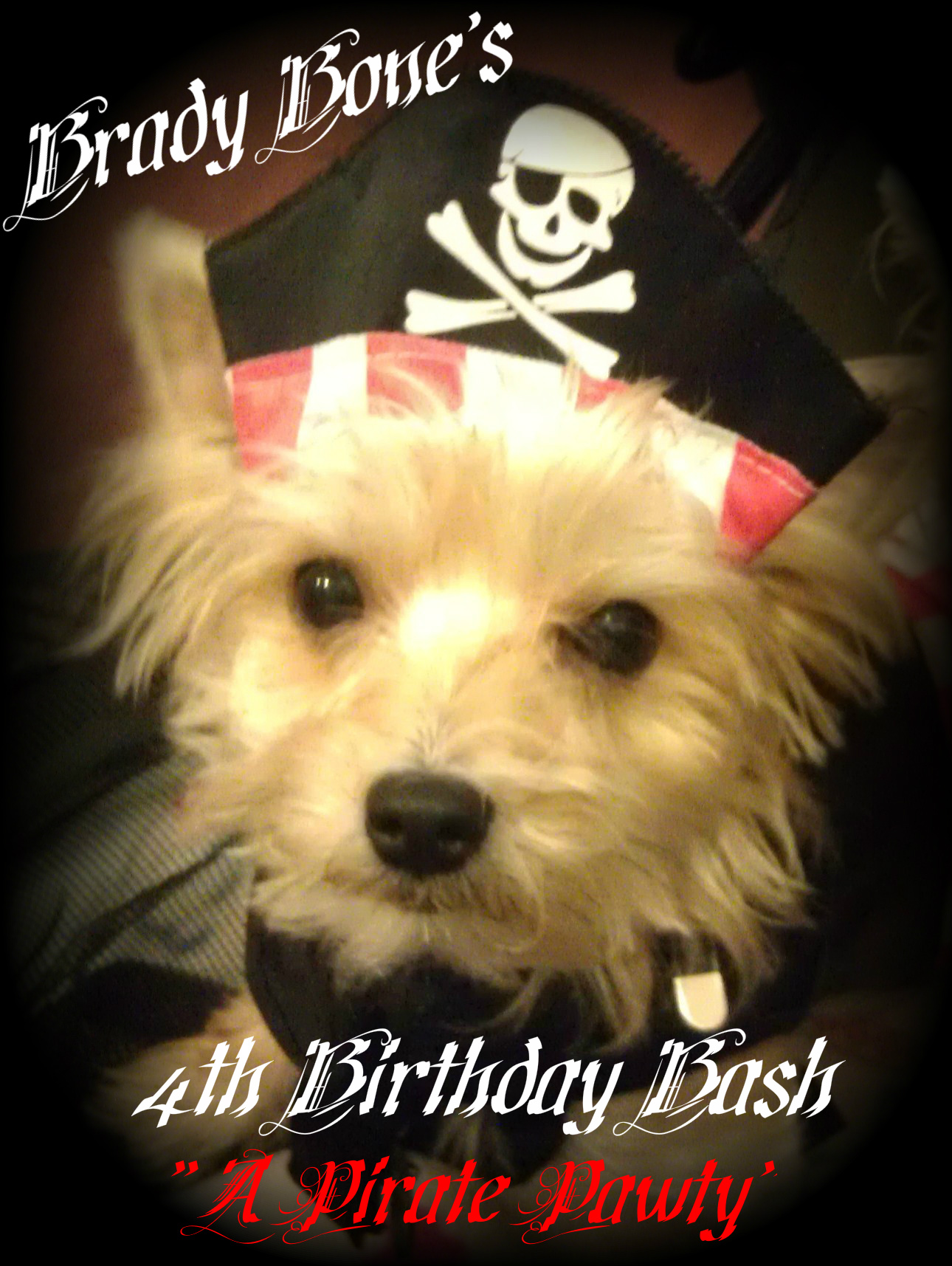 BBBIII (4th BDay) - A Pirate Pawty