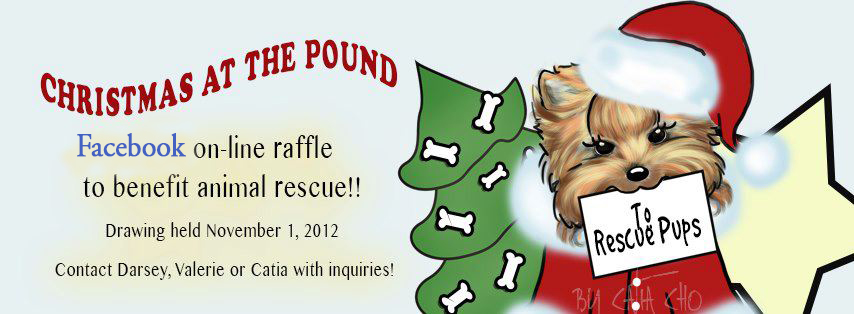 2012 FB Fundraiser: XMas @ the Pound