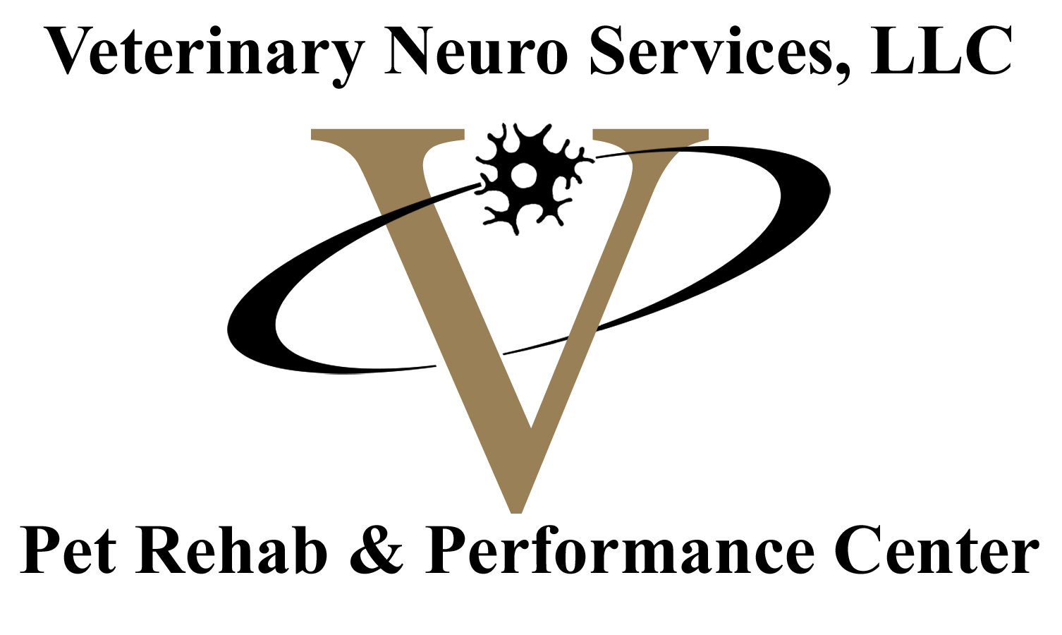 Veterinary Neuro Services, LLC