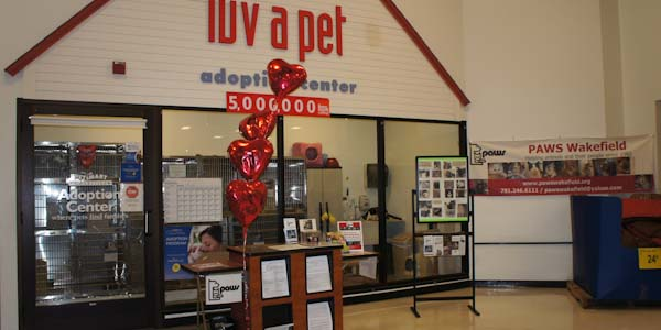 Petsmart adoption center