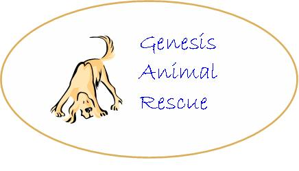 New Genesis Logo