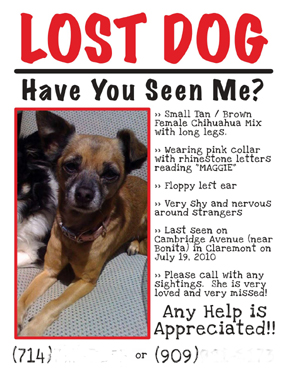 Lost Dog Flyer Example 9-2011