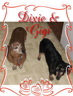 dixie and gigi senior 2013