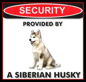 Husky Security