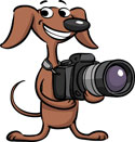 Web Image: Dog-Camera-Small