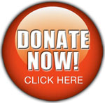 Web Image: Donate Button