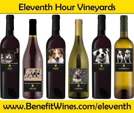 Web Image: Wine Banner Wide